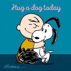 Hug a dog today