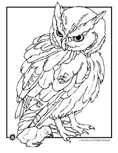 Eulen Malvorlagen kostenlos zum Ausdrucken | Eule Färbung Seiten realistische Owl und Baby Malseite – tierische Jr. 7006  32 ausmalbilder kostenlos