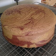 Coffee/Chocolate/Greentea Marble Sponge cake