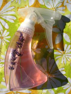 Homemade flea repellent for pets - lavender, lemon, and witch hazel, I've included eucalyptus as well