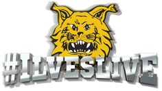 Logo #Ilveslive ohjelmaan / Logo for #Ilveslive Talkshow.