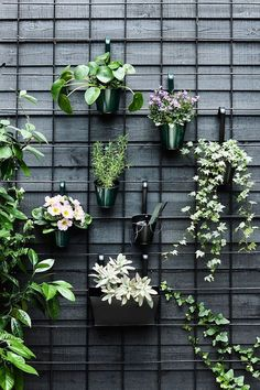 34 Nice Outdoor Hanging Plants Design Ideas - Every home becomes cozier with some hanging or potted indoor plants. For the garden or along the front walkway, outdoor artificial plants will do. Hanging Plants Outdoor, Indoor Plants, Indoor Outdoor, Hanging Planters, Outdoor Wall Planters, Concrete Planters, Hanging Plant Wall, Outdoor Balcony, Buy Plants