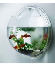 Regalos que encantan: .Aplique de pared Fish Tank Renovemos en Dekosas.