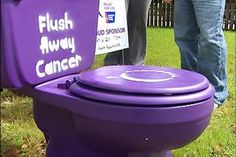 The team will put a toilet (purple for Relay, pink for Making Strides, etc) on the yard of a person you choose. They will need to pay to have it removed.