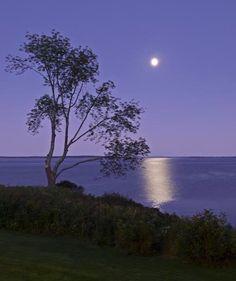 Moonrise over Penobscot Bay