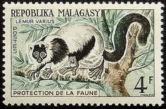 This Ruffed lemurs Lemur Varius Malagasy Postage Stamp Art is handmade by our family in Vancouver, Canada. Since 2001, weve been making and selling our art at craft fairs. We use only genuine, collectible postage stamps. Each piece is about the size of your hand (3.6 x 2.8). We choose from postage stamps worldwide and craft the wood frames in our studio. Were humbled that over ten thousand people have given our art to their friends and loved ones. Thanks for browsing our collection. We…