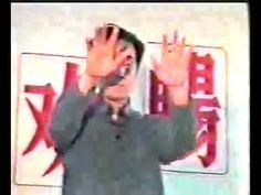 Zhineng Qigong LCUPCD by Dr Ming Pang www.chicenter.com