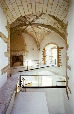 Lofts : Château de Passavant (49) - Passavant-sur-Layon (France)