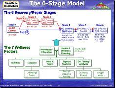 The 6-Stage Wellness Model for reversing Type 2 diabetes