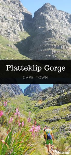 17 Best Hiking Trails in Cape Town Hiking Spots, Hiking Trails, Car Station, Forest Waterfall, Table Mountain, Mountaineering, Cape Town, Climbing, Cable