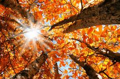 10 luoghi spettacolari in autunno.