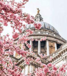 St. Pauls, London.-