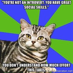 You people don't have the slightest idea how much effort it takes to come across as fun and entertaining. Anxiety Cat, Social Anxiety, Anxiety Girl, Anxiety Humor, Anxiety Disorder, Quotes Thoughts, Life Quotes Love, Dark Thoughts, Feelings