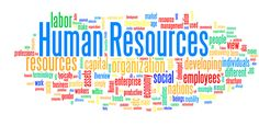 THE HUMAN RESOURCE FUNCTION OF THE MFI