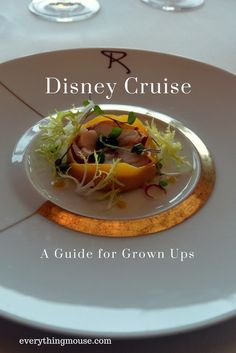 Disney Cruise Tips. A Disney Cruise Guide for Adults