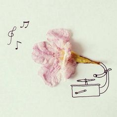 Pretty flowery disc player