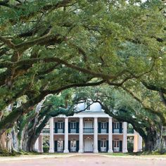 Oak Alley plantation, New Orleans, LA.