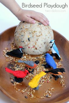 Love the idea of using it outside and letting the birds clean up the left over seed. An easy-to-make recipe for birdseed playdough that will occupy your little ones for hours! Includes ideas for stimulating lots of developmental skills. Spring Activities, Sensory Activities, Activities For Kids, Sensory Play, Animal Activities, Sensory Bins, Sensory Bottles, Sensory Table, Messy Play
