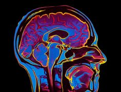 What Keeps Fibromyalgia Pain From Subsiding?