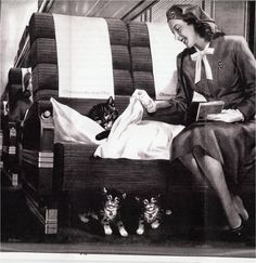 Advertisement for the Chesapeake and Ohio Railroad. Introducing Chessie, the sleeping cat and her two kittens. The USA long-distance luxury train had hostesses to care for passengers, especially children.
