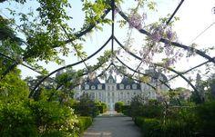 Château de Cheverny 3 - Cheverny