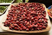 Melegueta (Grains of Paradise) is a herbaceous perennial plant native to swampy habitats along the West African coast. Its trumpet-shaped, purple flowers develop into 5 to 7 cm long pods containing numerous small, reddish-brown seeds. The pungent, peppery taste of the seeds is caused by aromatic ketones