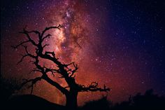 Peter Lik, probably THE most talented photographer out there.