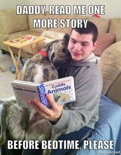 Daddy, read me one more story before bedtime,  please