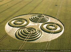 uk2006 Lucy Pringle's Crop Circle Photography