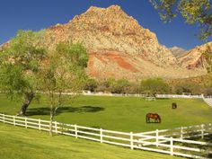 Historic Spring Mountain Ranch, Red Rock Canyon National Conservation Area near @JW Marriott Las Vegas Resort
