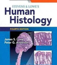 Swansons family medicine review 7th edition pdf download e book stevens lowes human histology 4e human histology stevens pdf fandeluxe Choice Image
