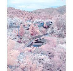 Japan- a candy coloured dream land