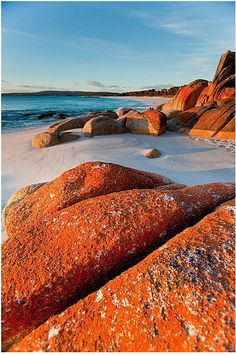 Bay of fires, Tasmania - I've been here and it's really as lovely as this picture