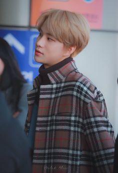 🍂Aesthetic brown Jungwoo🍁 airport  #JUNGWOO #정우 #NCT2018 #NCT127 #NCT #엔씨티127 #brownjungwoo #brownuwu Kim Jung Woo, Daddy Long, Appreciation Post, Nct Taeyong, Dream Guy, Winwin, Jaehyun, Nct Dream, Nct 127