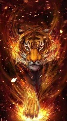 Lion Live Wallpaper, Tiger Wallpaper, Eyes Wallpaper, Animal Wallpaper, Tiger Images, Tiger Pictures, Lion Images, Big Cats Art, Cat Art