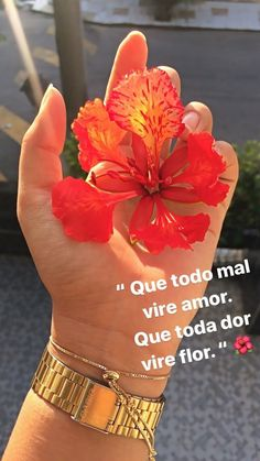 Instagram Blog, Instagram Story Ideas, Aesthetic Photo, Aesthetic Pictures, Frases Girl Boss, Photos Tumblr, Insta Story, Iphone Wallpaper, Tattoo Quotes