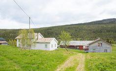 FINN – ENGERDAL - 8000 dekar skog/-utmarkseiendom med hyttetomter under utvikling !