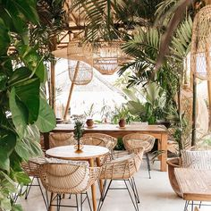 This botanical decor is perfect for any bohemian home! The natural wicker dining chairs and overheads are so beautiful. I love the jungalow vibe of this setting! Restaurant Interior Design, Decor Interior Design, Bar Piscina, Cafe Central, Cafe Design, House Design, Bali Restaurant, Cactus Restaurant, Bohemian Restaurant