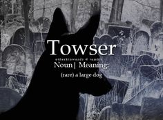 otherkinwords:  Towsernoun | (rare) a large dogSuggested by:...