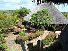 flamingo villas club nel malindi kilifi garden pinterest