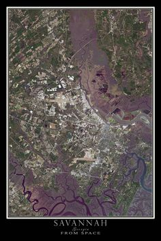 Savannah Georgia Satellite Poster Map