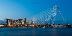 Erasmusbrug - Rotterdam, Netherlands