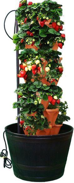 PVC Strawberry Tower, Vertical PVC Strawberry Planter