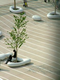 Landscape Architecture: EARTHSCAPEProject Name: Urban dock LaLaport Toyosu