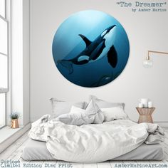 """Limited Edition Disc Print • """"The Dreamer"""" - Orca Art by Amber Marine • Curioos"""