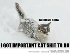 Exactly how I feel when it snows!!