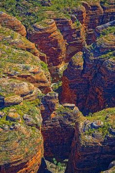 Bungle Bungle Ranges, Western Australia // Warnum (Turkey Creek) and Kununurra Melbourne, Brisbane, Australia Travel, Western Australia, Places To Travel, Places To See, Travel Destinations, Beautiful World, Beautiful Places