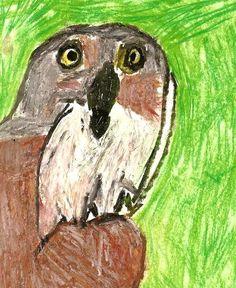 Owl by Jeremy Oil Pastel