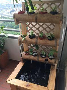#HomeHydroponics