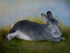 Bunny - Oil Painting of a Rex Rabbit, painting by artist Anne Zoutsos